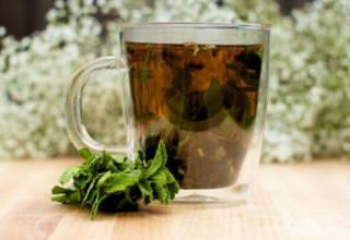 Чашка чая с мятой может помочь при аллергии