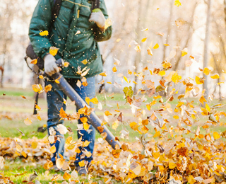 Уборка прелых листьев