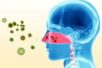 Бактериальные инфекции
