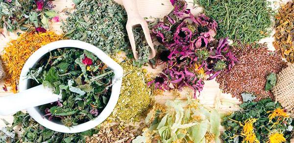Сбор сушеных трав от простатита